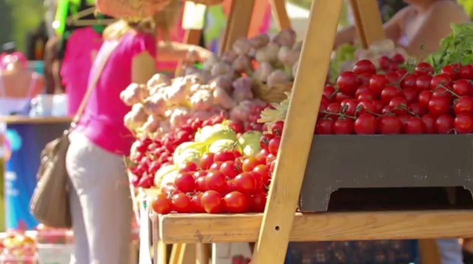 Anketa e buxhetit të familjes, INSTAT: Për çfarë shpenzojnë shqiptarët