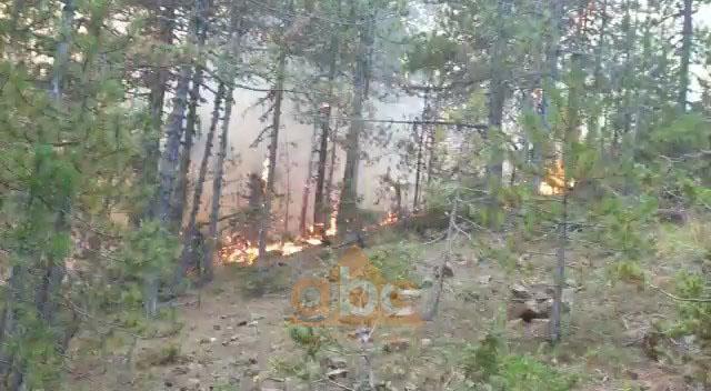 Aktivizohen dy vatra të reja zjarri në Devoll