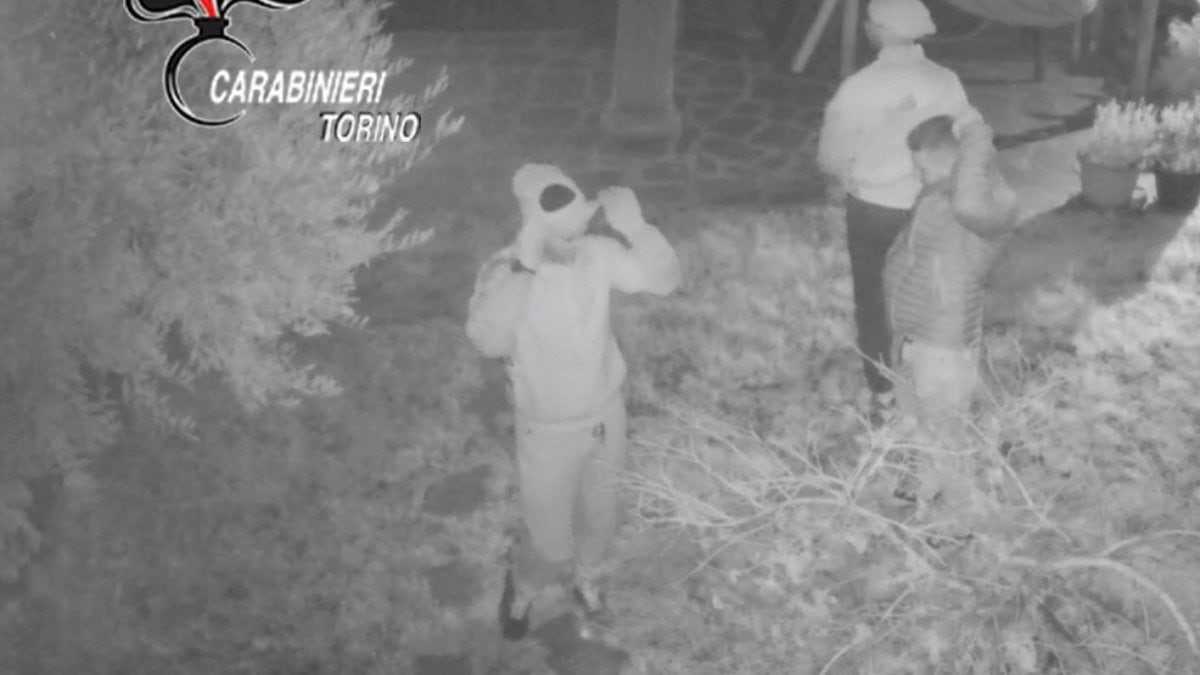 VIDEO | Vidhnin banesat me shkopinj dhe thika, shkatërrohet banda e grabitësve
