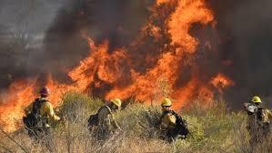 Vijojnë zjarret në Kaliforni, autoritetet detyrohen të ndërpresin energjinë elektrike