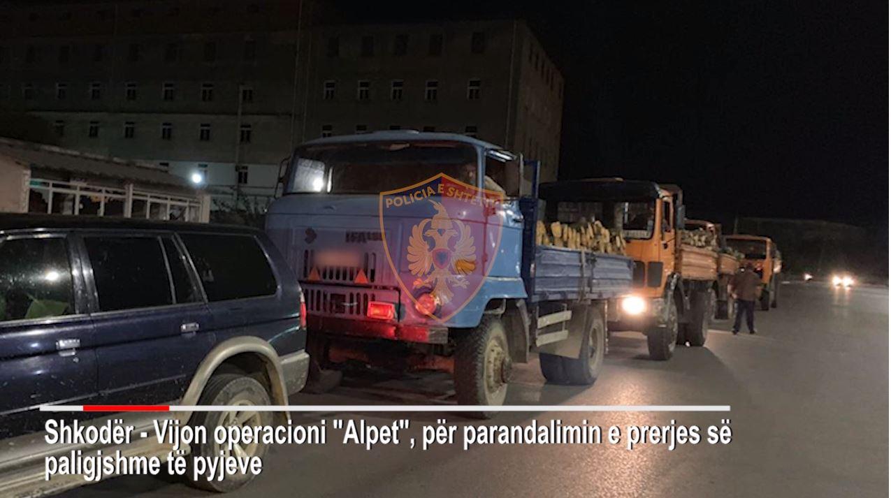 """Bënë """"kërdinë"""" me pyjet në Alpe, bllokohen 8 kamionë me 200 m3 dru zjarri"""