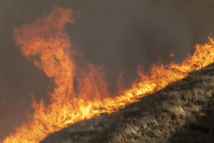 Zjarret në Kaliforni, evakuohen më shumë se 7 mijë shtëpi