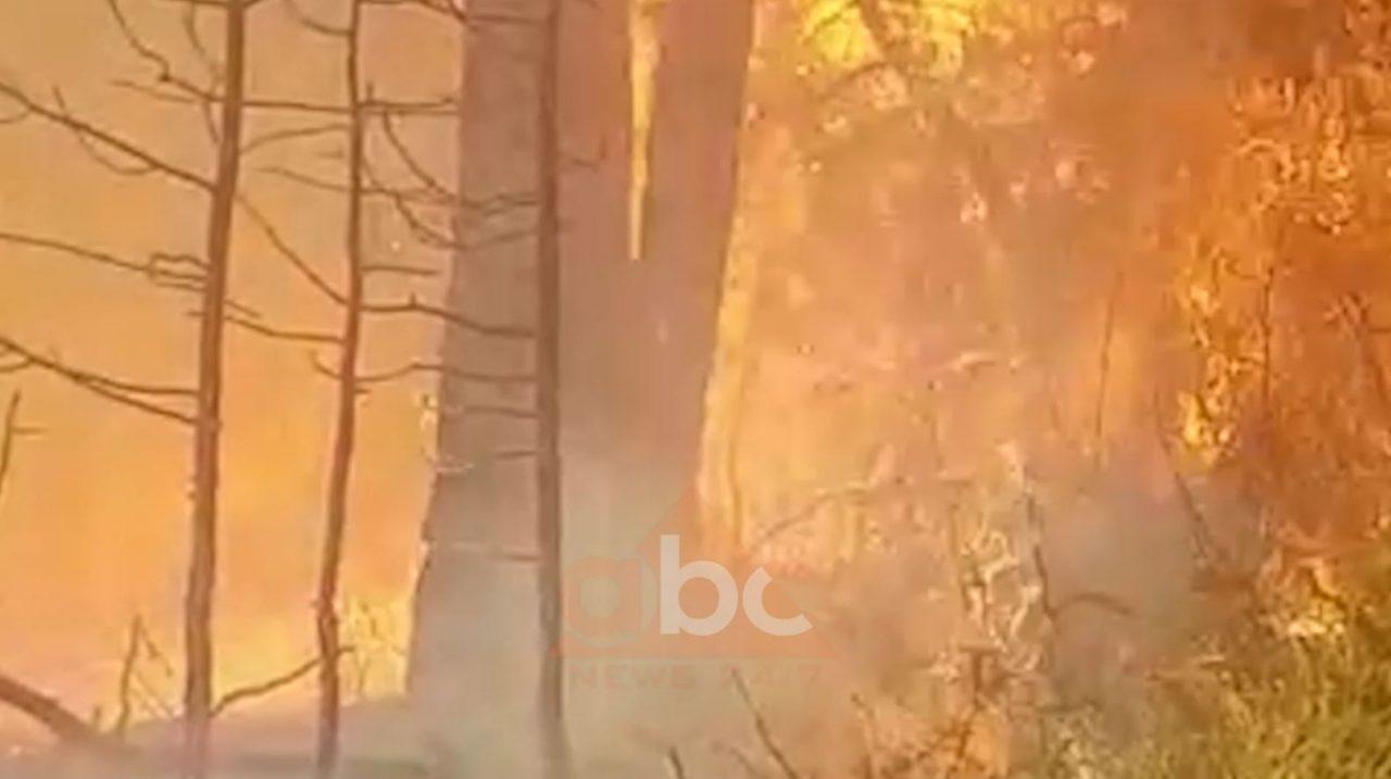 zjarri-devoll-1280x717.jpg