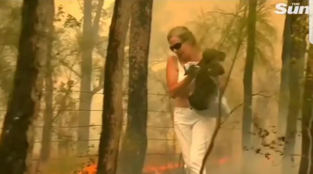 Një australiane shpëton koalën nga zjarri