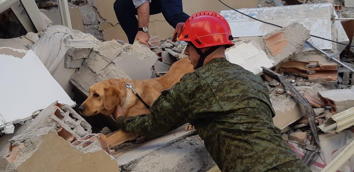 FOTO/ Efektivët e FSK përdorin qenin për lokalizimin e banorëve nën rrënoja