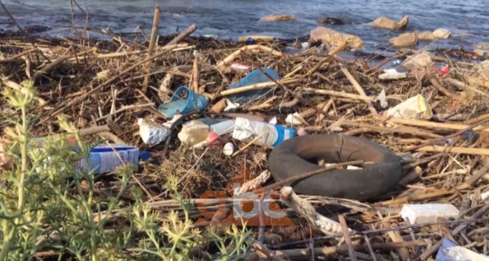 Mbulohet nga mbeturinat bregdeti i Shëngjinit