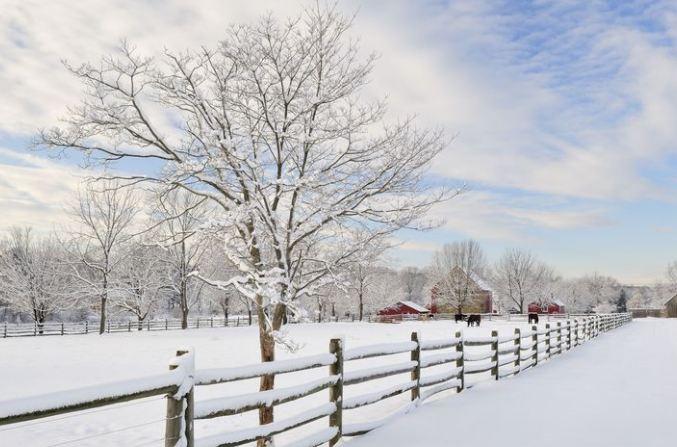Përfitimet shëndetësore të ecjes gjatë periudhës së dimrit