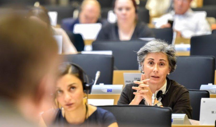 Raportuesja për Shqiperine në PE, Santos: Të vazhdojnë reformat. Hapja e negociatave s'duhet të ndalet