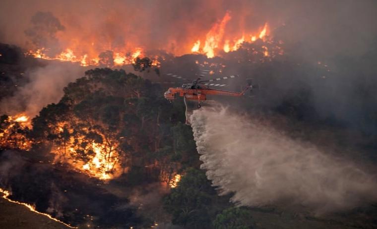 Zjarret në Asutrali, shpallet gjendja e jashtëzakonshme