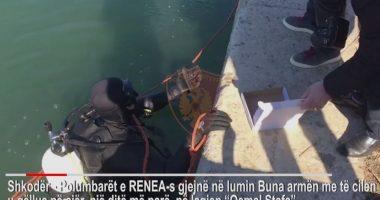 Përplasja me armë në Shkodër, polumbarët gjejnë armën në Lumin Buna, në kërkim autorët