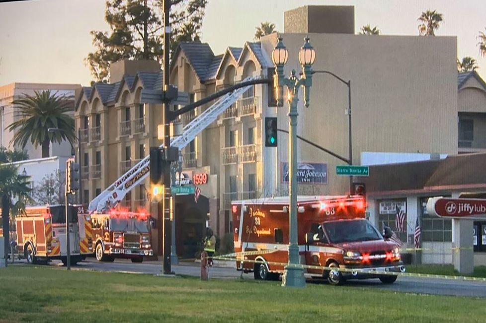 E pazakontë, 40 mijë bletë dalin nga çatia e një hoteli, bllokohet një rrugë në Kaliforni