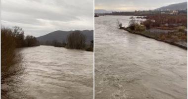 """Elbasani nën """"pushtetin"""" e ujit, """"Shkumbini"""" përmbyt 25 banesa"""