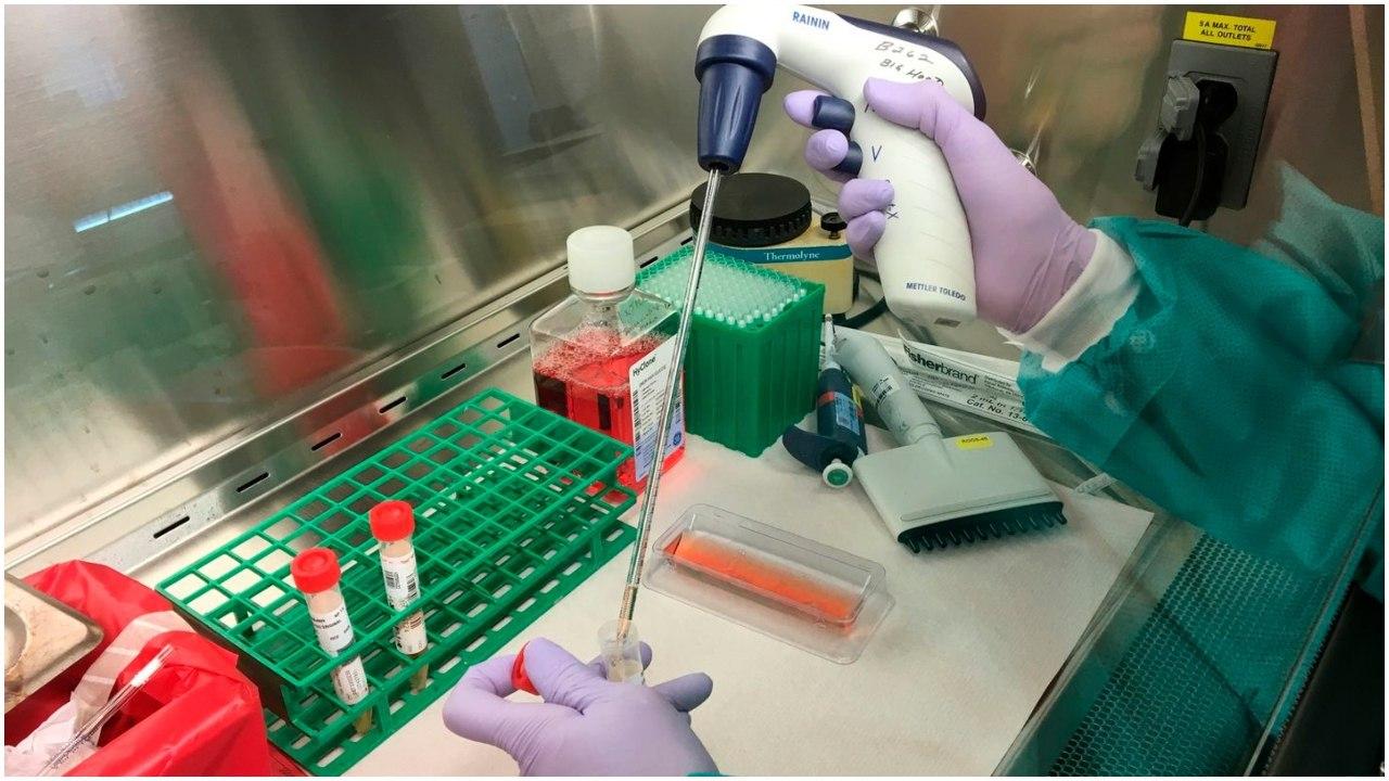 4 mijë teste koronavirusi në 24 ore! Vjen super pajisja në Shqipëri