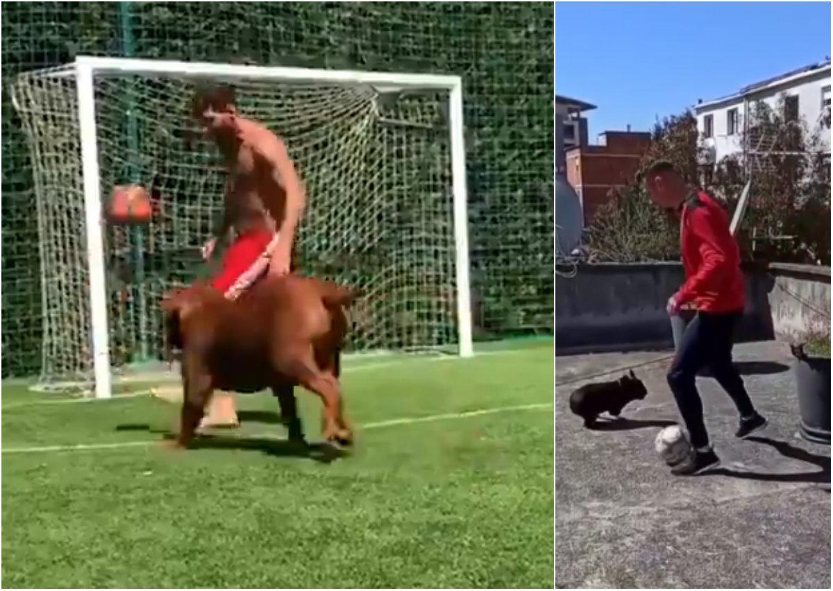 """VIDEO/ """"Gol në shtëpi"""", Bruno Dita dhuron spektakël si… Leo Messi"""