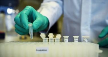 Vaksina kundër COVID-19, Izraeli nis testimin te kafshët