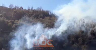 Zjarri shkrumbon sipërfaqe të mëdha me kullota në fshatit Majkosh në Tepelenë