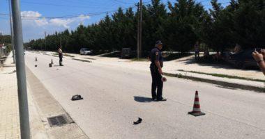 Përplaset nga motorrkorrësja, humb jetën 63-vjeçari në Divjakë