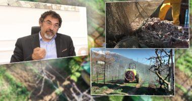 Çuçi: Nuk kemi financim të posaçëm për bujqësinë, peshkimi dhe agro-turizmi më të dëmtuar