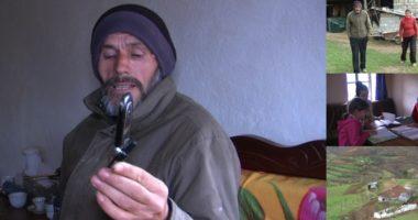 """""""Nuk kemi telefon të mirë për mësimet"""", familja në Librazhd në kushte ekstreme: Jetojmë me ndihmë ekonomike"""