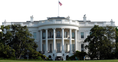 Zyrtari i SHBA: Kina fshehu virusin, do t'i shkojmë çështjes deri në fund