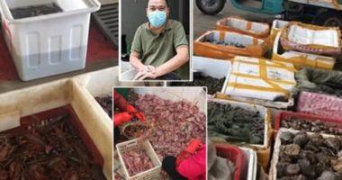 VIDEO/Ua mbyllën në Wuhan, tregtarët rihapin tregun famëkeq vetëm 14 km larg