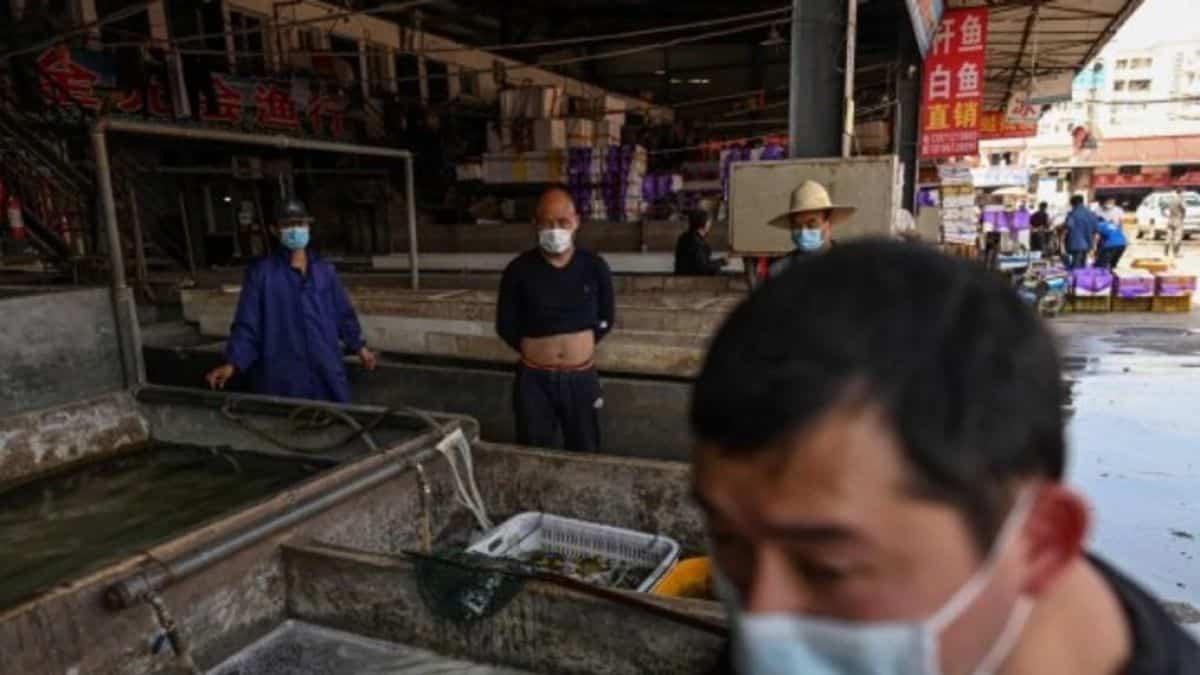 Studimi i ri/ Koronavirusi nuk doli nga tregu i kafshëve në Wuhan