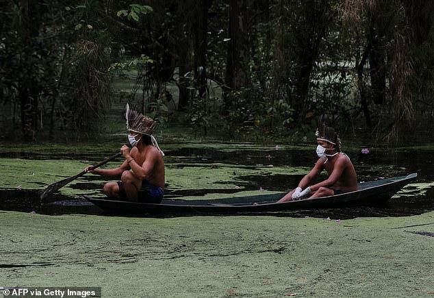 Larg botës së qytetëruar, fiset e indigjenëve në Amazonë tregojnë si e kurojnë koronavirusin