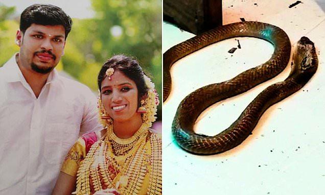 Burri tentoi të vriste gruan duke i hedhur nepërkën, ia arriti qëllimit me gjarprin korba