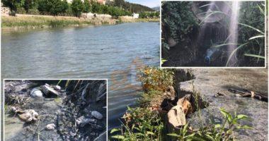 Drini në Lezhë po shndërrohet në kanal kullues, eksperti i mjedisit: Të disiplinohen shkarkimet