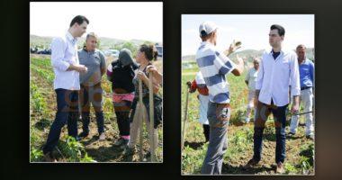 Basha nga Rrogozhina: Fermerët luftojnë me mbijetesën, pandemia e bën situatën më kritike