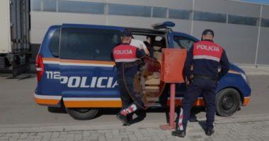 E dhunonte vazhdimisht e i vodhi banesën bashkëjetueses, në pranga 44-vjeçari në Tiranë