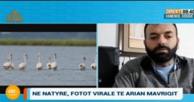 """Fotografi i """"Jetës së Egër"""" flet për speciet e rralla në Shqipëri: Nuk duhet lejuar betonizimi i Vjosës"""