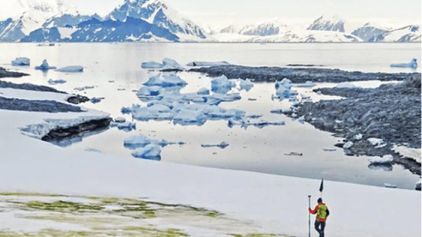 Kriza e klimës ndryshon pamjen e Antarktidës, nga e bardhë në jeshile