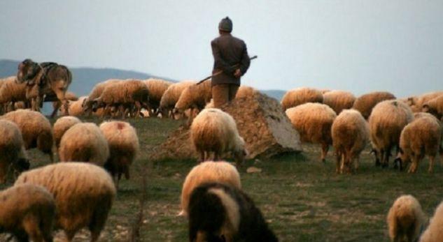 U vetëplagos aksidentalisht me armë zjarri, humb jetën bariu në Dibër