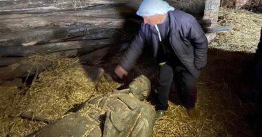 Kapur pas Enver Hoxhës: Ruajtja e statujës së fundit të Shqipërise komuniste nga një grua 78-vjeçare ne Labinot