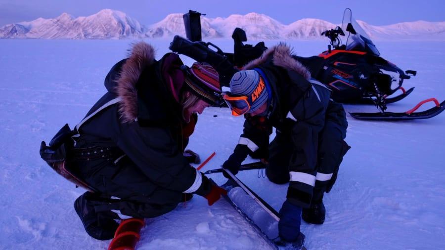 Ishin për ekspeditë, izolohen nga pandemia eksplorueset e Arktikut
