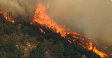Zjarr në Berat, digjen dhjetëra hektarë pyje