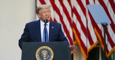 """Jam """"president i ligjit dhe rendit"""", Trump reagon sërish protestave në SHBA"""
