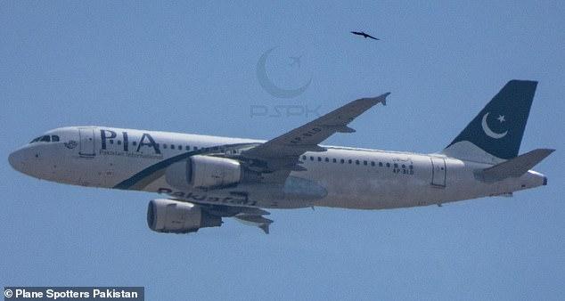 Përplasja e avionit që mori 97 jetë njerëzish, një nga pilotët kishte licencë false