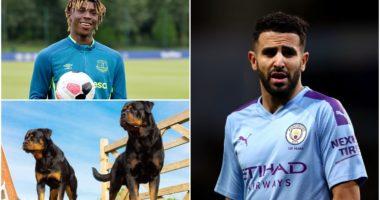 Mahrez u sulmua, Kean investon 30 mijë sterlina për dy qen roje