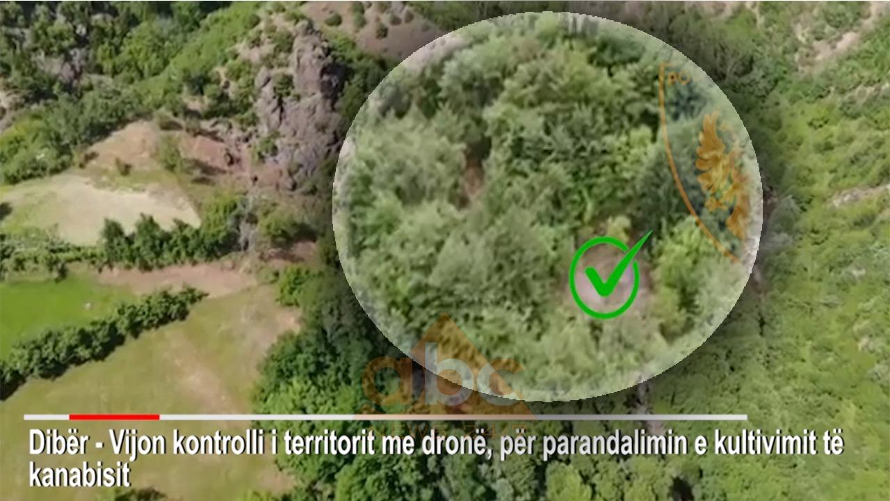 VIDEO/ 50 policë dhe dy dronë, çfarë zbuloi policia në malet e Bulqizës