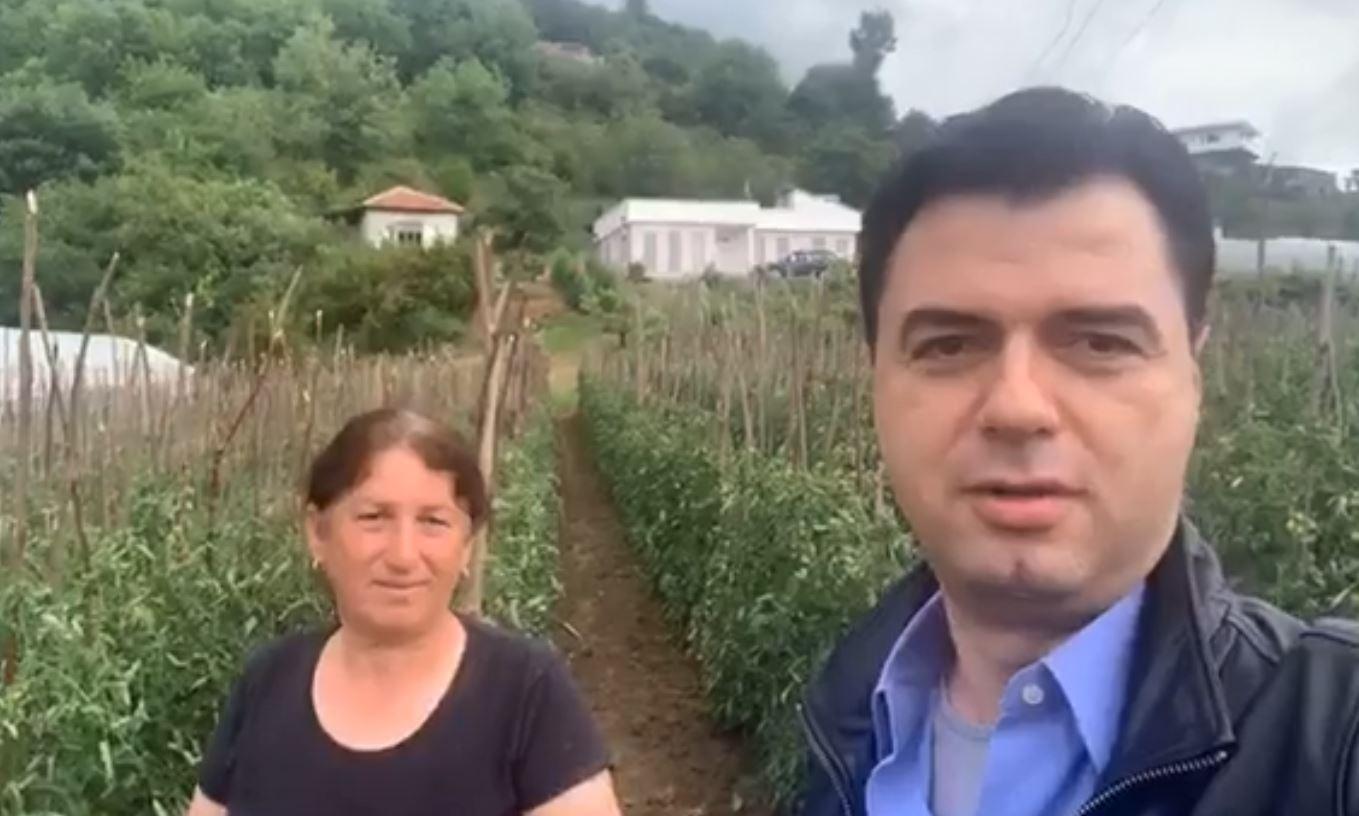Basha takim me fermerët në Ndroq: Të braktisur nga shteti, do bëhet gjithçka për nxitjen e eksportit