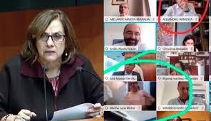 FOTO/ Senatorja harron kamerën ndezur dhe fillon të zhvishet