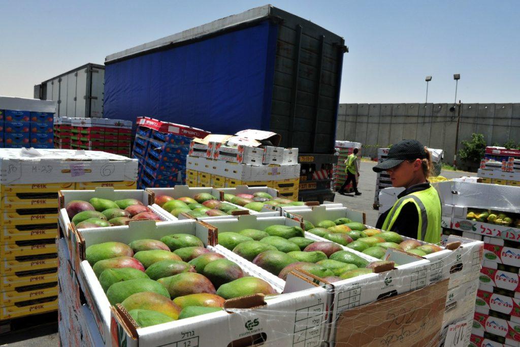 20 grup-mallrat më të importuara në 4-mujor, dominojnë ushqimet
