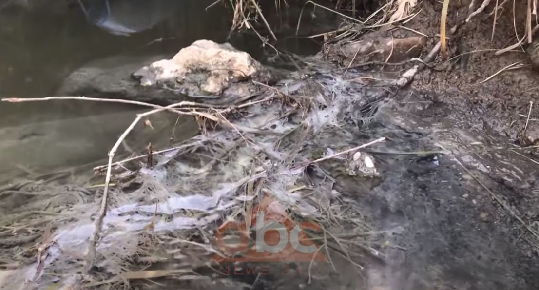Bregdeti i Kunes në Shëngjin drejt shkatërrimit, prefekti: Indentifikoni shkaktarët e ndotjes