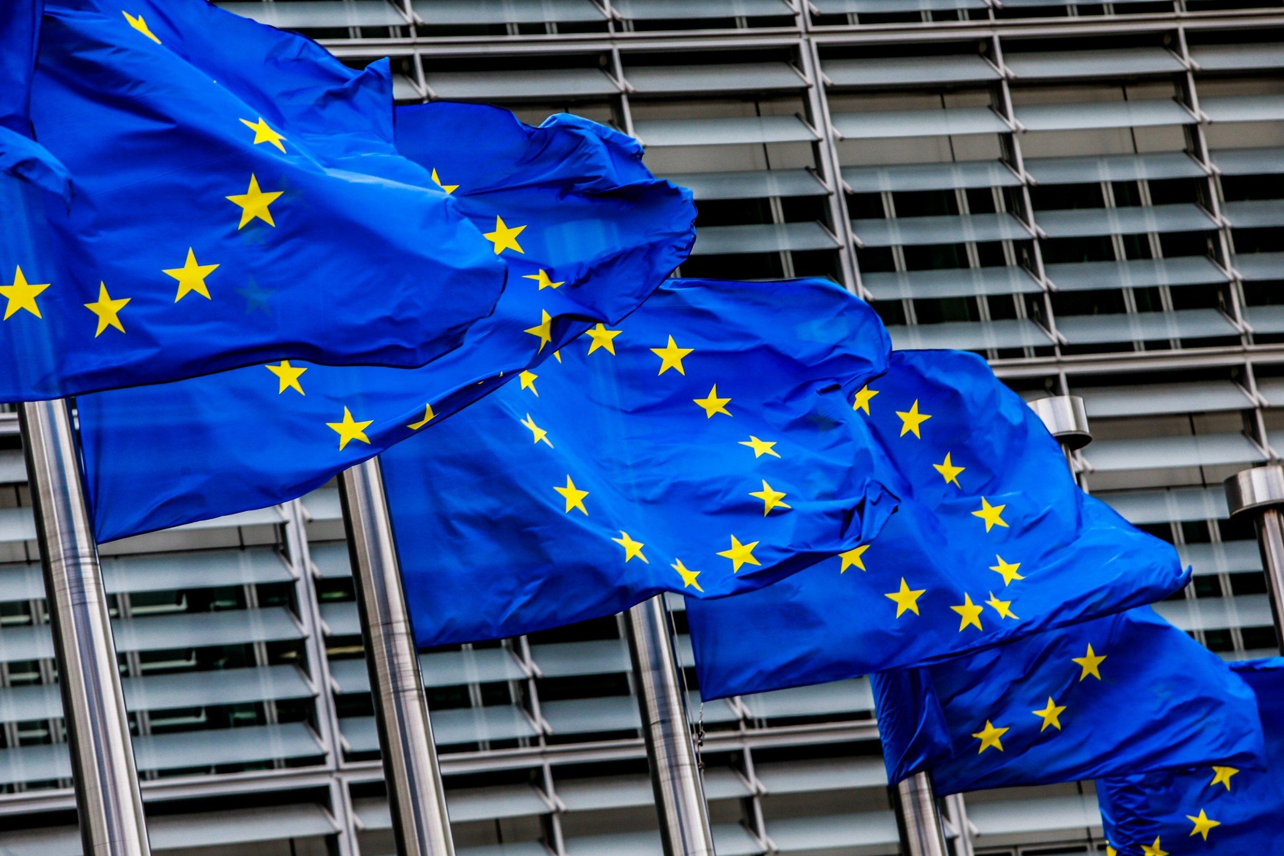 Ngociatat, liberalët e PE bëjnë dallimin e qartë mes Shqipërisë dhe Maqedonisë së Veriut