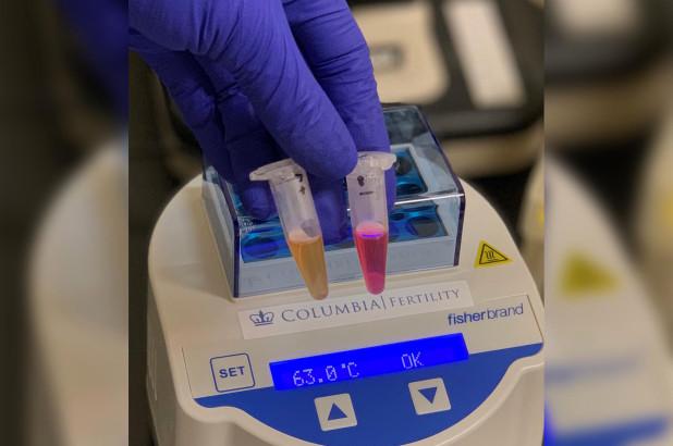 Rezultat në 30 minuta, mjeku zhvillon testin e shpejtë anti-covid