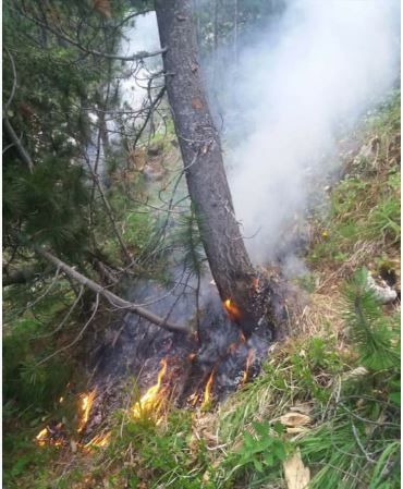 Zjarri në malin e Gjallicës, aktiv që prej ditës së djeshme