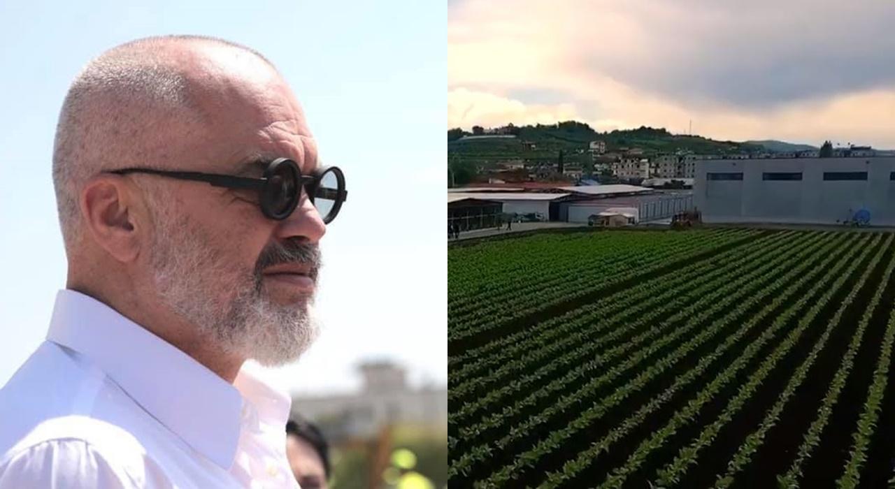 Rama publikon videon: Prodhimi dhe eksportet e fermerëve në rritje, mbështetja e qeverisë do vijojë