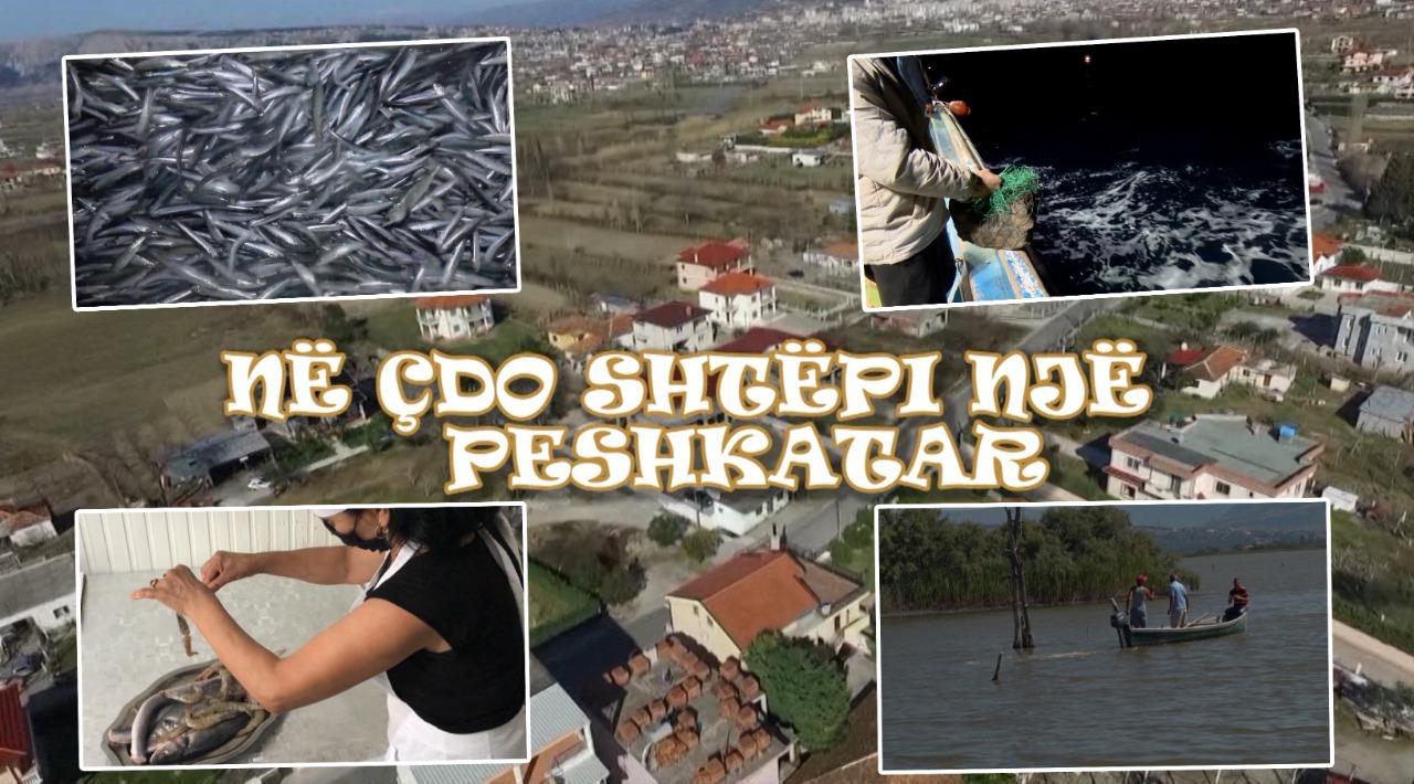 """Udhëtim në """"Ishull Lezhë"""", në çdo shtëpi ka një peshkatar dhe një kuzhiniere"""